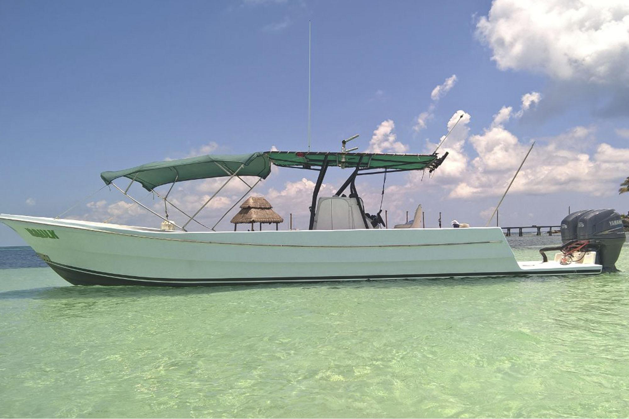 Golf Cart Rental Isla Mujeres - Whale Shark